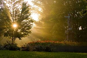 statue in the sun