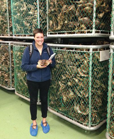 Rachel Ganson Nets Of Dried Fish Iceland
